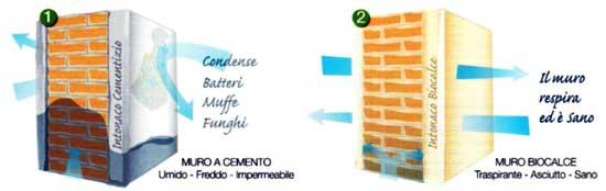 Muri e umidit architetto facile for Biocalce intonaco